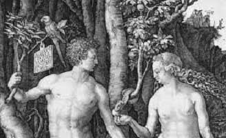 Discovery Institute Endorses a Literal Adam and Eve