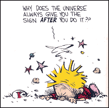 Calvin and Hobbes, Problem of Pain