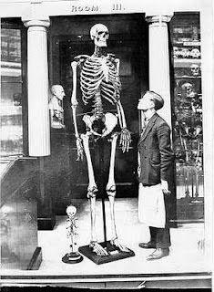 Human Giants over ten feet tall?